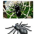 Giocattoli di telecomando, WINWINTOM giocattolo del giocattolo dei capretti di telecomando a raggi infrarossi del ragno animale di alta simulazione