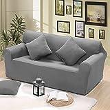 Reelva Sofa-Überzug für 2-Sitzer-Couch, Überwurf, besonders elastischer Stoff, waschbar, grau, 2-Sitzer