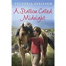 A Stallion Called Midnight (English Edition)