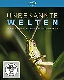 Unbekannte Welten - Der Mikrokosmos der Spinnen, Milben und Insekten [Blu-ray]