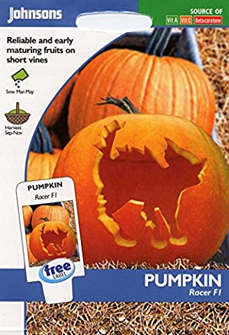 Johnsons Seeds - Pictorial Pack - Vegetable - Pumpkin Racer