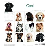 Cani-Calendario-da-Muro-2019