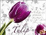 Artland Qualitätsbilder I Glasbilder Deko Glas Bilder 80 x 60 cm Botanik Blumen Tulpe Digitale Kunst Weiß A5WB Tulpen