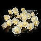 Lichterkette 20 LED Rosen Innen Warmweiß Romantisch batteriebetrieben Kabel transparent für Zimmer Bett Hochzeit Party Schlafzimmer Weihnachten Tannenbaum Party Licherkette