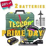 Seghetto Alternativo, TECCPO 18V Sega Alternativa a Batteria, 2 Batterie 2.0 Ah, 30min Caricatore Rapido, Illuminazione LED, 0~2300SPM, Altezza di Corsa 22 mm, Angolo Max 45 °, 6 Lame - TDJA22P