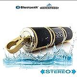 AQWWHY 12V Motorrad Wireless Bluetooth Wasserdichte Lautsprecher, Bluetooth-Motorradradio unterstützt USB/TF-Karte/AUX-Eingang/UKW-Radio