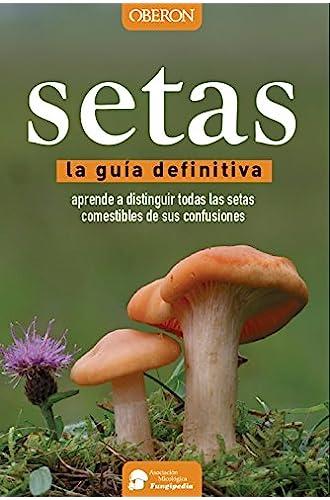 Descargar gratis Setas. La guía definitiva de Aitor Calvo Pérez