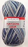 Schoeller und Stahl Fortissima Color Sockenwolle aus 75% Schurwolle (Superwash), 25% Polyamid (345 Blau Grau Mix)