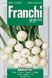 FRANCHI SEMENTI Cipolla Bianca Di Barletta