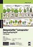 Lernposter Sachunterricht - 1./2. Klasse: 6 Poster für den Klassenraum (Bergedorfer Lernposter)