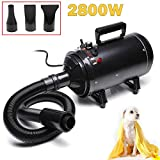 2800W Stepless Speed Dryer Powerful Professional Dog Grooming Pet Hairdryer Blaster with 3 Nozzles for Home Pets Salon
