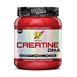 519M%2BNEJPHL. SS300  - BSN Creatine DNA