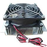 Mogustore XD-2024 Módulo de refrigeración Semiconductor Kit de Agua fría Mini Fish Tank Chiller 15 litros Refrigerador pequeño