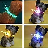 1pc ajustable impermeable eléctrico mascota perro LED intermitente LED reflectante cuello cadena herramienta de cachorro