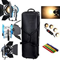 HWAMART® 300 / 500W + 650W + 1000W luce al tungsteno Fresnel Spot Light Bulb + + Barndoor box + bag fly
