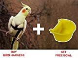 #1: Pawzone Pet Bird Harness For Small Birds & Cockatiel Bird + free Bowl