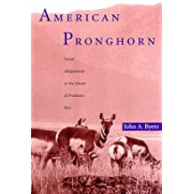 American Pronghorn: Social Adaptations and the Ghosts of Predators Past by John A. Byers (1998-02-03)