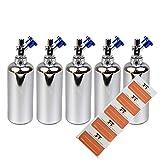 NOS Liquidflaschen 5 x 60ml - Kunststoffflaschen aus PET - inkl. 5 Etiketten - Tropfflaschen,Dosierflaschen,Quetschflaschen (Silber)
