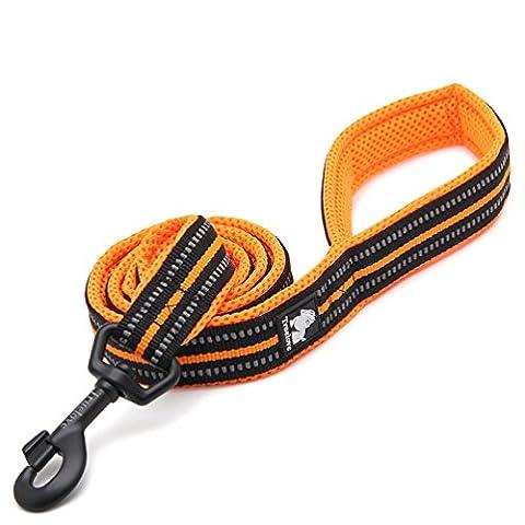 Rantow 200cm Long 2cm Large respirant matelassé Mesh Dog Leash avec 3M Night Safety réfléchissantes rayures, Soft confortable corde de chien pour les grands / moyens chiens (Orange)