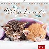 Für Katzenfreunde 2017: Dekorativer Wandkalender mit Monatskalendarium