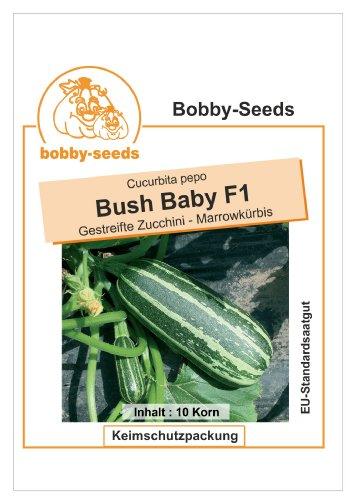 Bobby-Seeds Zucchinisamen Bush Baby F1, Marrow Portion