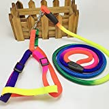 #6: Pet Wholesale Imported Multi Color Dog Harness ( Puppy )