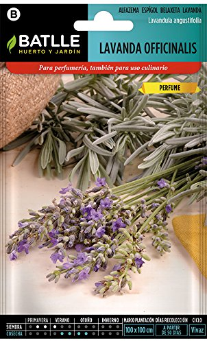 Battle - Semi Aromatici Lavanda Officinalis (Semi - 40Cm)