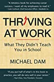 Thriving At Work: What They Didn't Teach You in School (English Edition)