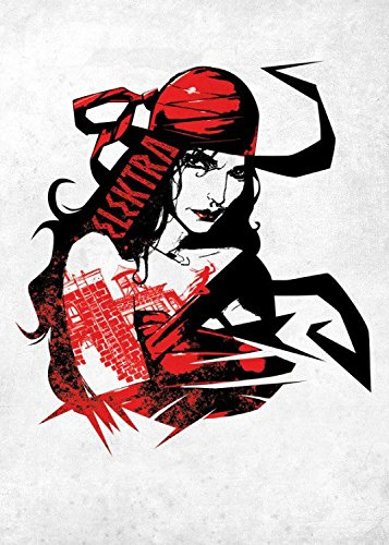 Marvel Comics Metal Poster The Defenders Elektra Assassin 32 x 45 cm Posters