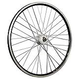 Taylor-Wheels 28 Zoll Vorderrad X-Plorer Shimano Dynamo DH-C3000-3N Schwarz