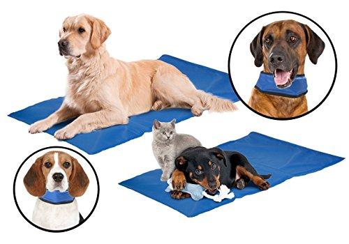 Kühl-Kombi für große Hunde: Kühlmatte / Kühlkissen plus Kühl-Bandana