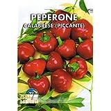 Vivai Le Georgiche Peperone Calabrese Piccante (Semente)