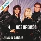 Living In Danger (The Remixes)