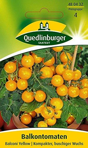 Tomatensamen - Balkontomate Balconi Yellow von Quedlinburger Saatgut