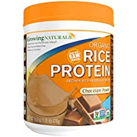 Growing Naturals, Organic Brown Rice Protein Isolate Powder, Chocolate Power, 16.8 oz (476 g)