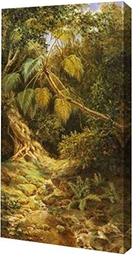 PrintArt gw-pod-64–266065–48,3x 91,4cm jungala Cubanavon Esteban Chartrand Galerie verpackt Giclée-Kunstdruck auf Leinwand, 48,3x 91,4cm