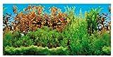 Trixie Aquarien-Rückwand 60x30 cm, beidseitig, Unterwasser-Landschaft