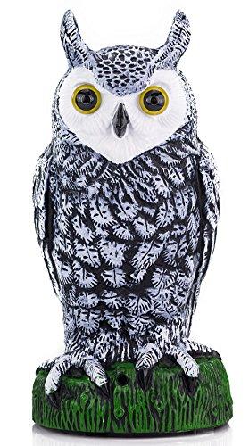 night-sensor-light-garden-owl-lighting-eyes