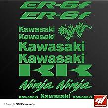 Stickers Kawasaki ER-6F–verde kawasaki–Tabla de 14Adhesivos, adhesivos, pegatinas, ER 6F, ER6F, ER6F, er6-f