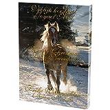 Adventskalender Schmuck mit Pferde-Motiv - für Kinder, Mädchen, Teenies - mit Armbändern, Kette, Collier, Charms & Beads