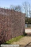 Sichtschutzelement aus Weide, 90cm x 180cm, Papillon