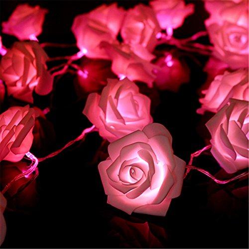 king-do-way-20er-lichterkette-led-blumen-schoene-rose-form-aussen-innen-batteriebetriebene-hochzeits