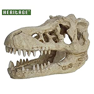 HERITAGE WP047 AQUARIUM FISH TANK T-REX DINOSAUR SKULL ORNAMENT DECORATION 17CM