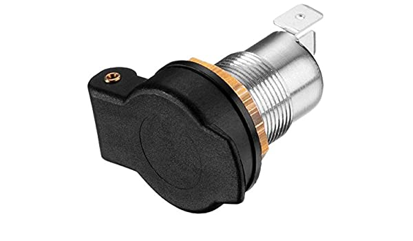 Clayton Plektrum Exotic /& Wood Horn PlekPickPlektrenPlektron