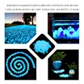 Wiewish 100er Leuchtsteine, Leuchtende Kieselsteine künstliche Dekostein Floureszierende Pebble für Aquarium, Garten, Gehweg, Dekoration. von Wiewish auf Du und dein Garten