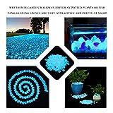 Wiewish 100er Leuchtsteine, Leuchtende Kieselsteine künstliche Dekostein Floureszierende Pebble für Aquarium, Garten, Gehweg, Dekoration. - 2