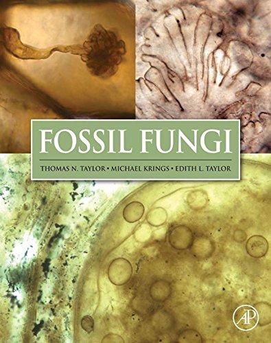 Fossil Fungi (English Edition)