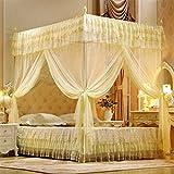 Mengonee Doccia aperta a tre porte Mosquito Net letto matrimoniale tende letto letto a tenda letto a baldacchino rete completa regina King Size Net