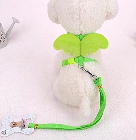 RICISUNG Angel Wings Adjustable Angle Wing Rabbit Ferret Pig Harness Leash Lead Strap Chest Back Traction Rope