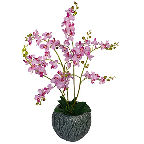 60cm Künstliche Luxus Orchid - Triple Stem - Rosa Realistische Pflanze in schwarzem Kunststoff-Topf